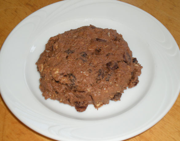 Chocolate Oatmeal Scone